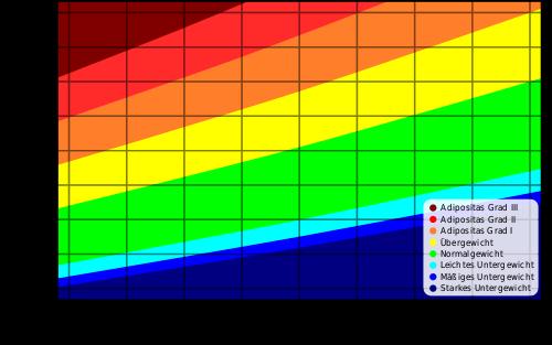 Idealgewicht nach dem Body Mass Index (BMI)