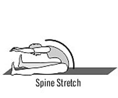 Spine Stretch