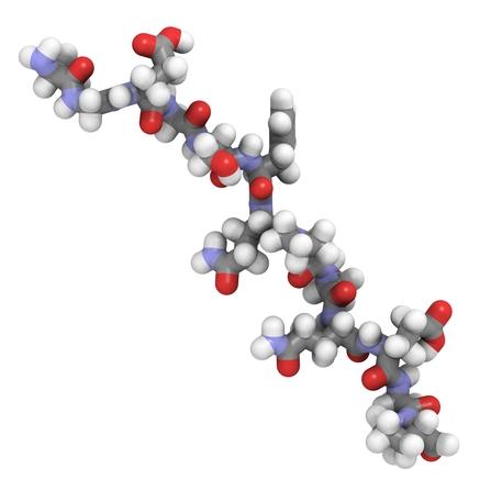 Gliadin-Antikörper