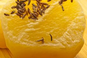 Abnehm-Snack Harzer Käse