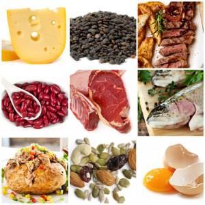 Proteinquellen