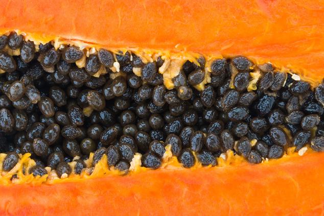 Papaya-Kerne