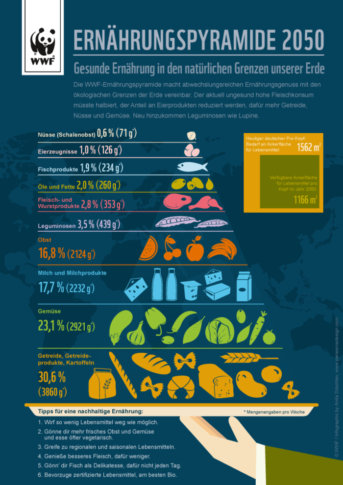 WWF Infografik Ernaehrungspyramide 2050
