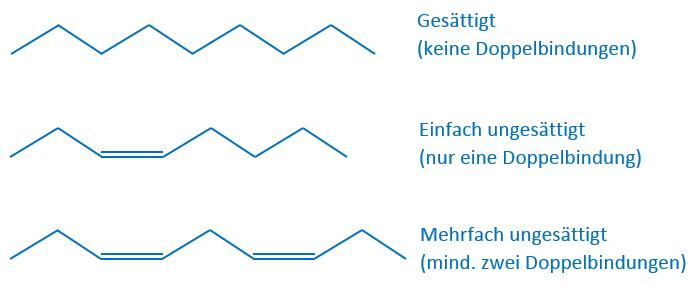 Fettsäuren nach Anzahl der Doppelbindungen