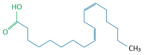 Linolsäure Skelettformel