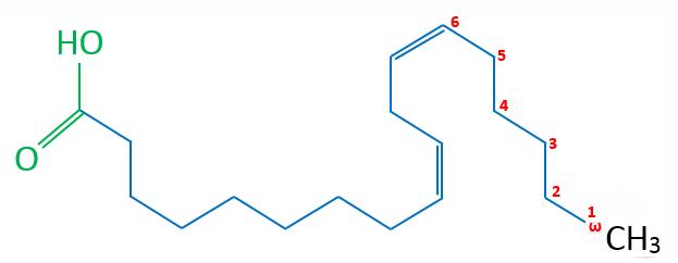 Linolsäure (Omega-6-Fettsäure) Skelettformel